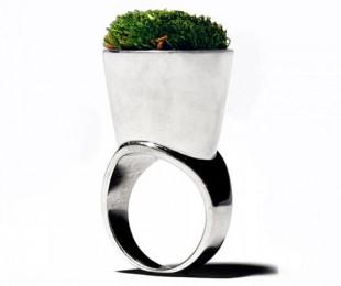 Growing Jewelry